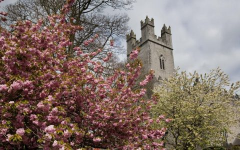 Things to do in Limerick - St Johns Castle